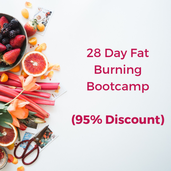 28 day fat burning bootcamp - Anna's Nutrition
