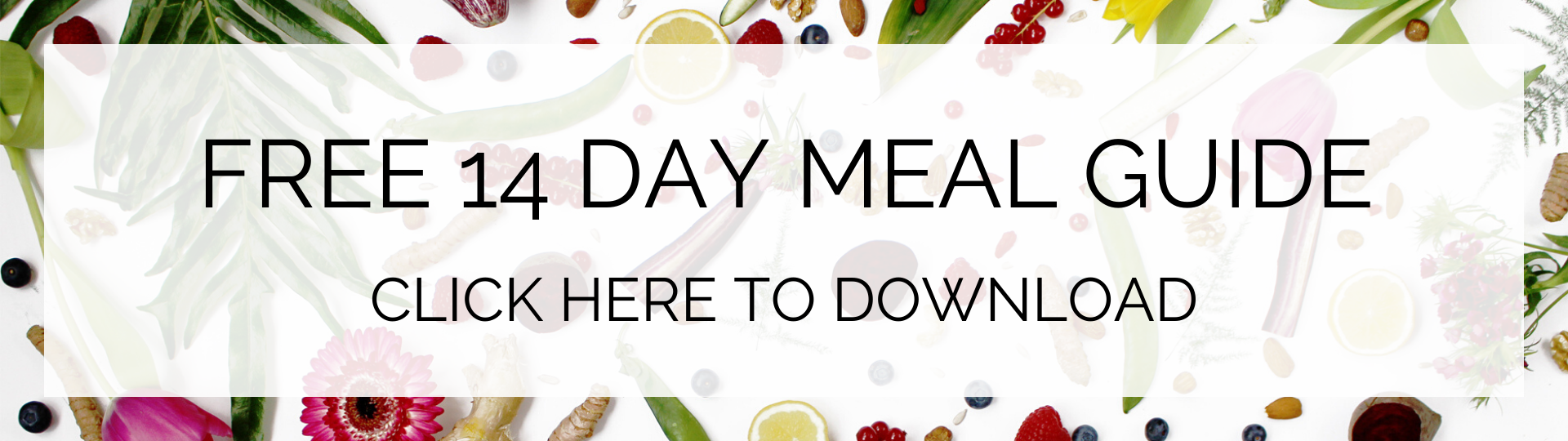 FREE 14 DAY MEAL GUIDE